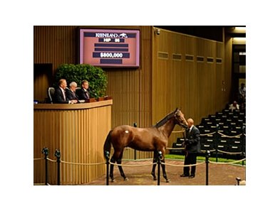 Hip 86 Bernardini-Private Status sold for $800,000 at Keeneland Yearling Sales