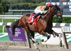 "Le Grand Cru took advantage of a short field to win the off-the-turf Kelso Handicap at Belmont Park.<br><a target=""blank"" href=""http://www.bloodhorse.com/horse-racing/photo-store?ref=http%3A%2F%2Fpictopia.com%2Fperl%2Fgal%3Fprovider_id%3D368%26ptp_photo_id%3D8531975%26ref%3Dstory"">Order This Photo.</a>"
