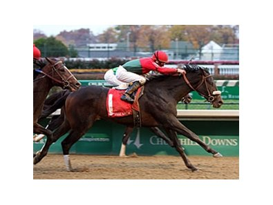 Anak Nakal powers home to win Kentucky Jockey Club Stakes (gr. II) at Churchill Downs on Nov. 24.