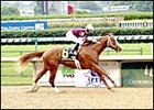 No Surprise as Favored Cuvee Rolls in Kentucky Breeders' Cup
