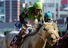 "Afleet Again upsets the Marathon.<br><a target=""blank"" href=""http://www.bloodhorse.com/horse-racing/photo-store?ref=http%3A%2F%2Fpictopia.com%2Fperl%2Fgal%3Fprovider_id%3D368%26ptp_photo_id%3D9729039%26ref%3Dstory"">Order This Photo</a>"