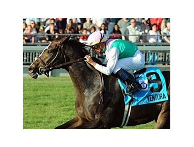 Ventura winning the Woodbine Mile (Can-IT).