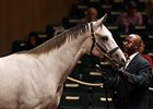Hip #402, a gray or roan colt by Tapit was bought for $700,000 during the second session of the Keeneland September yearling sale.