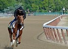 "I'll Have Another at Belmont Park.<br><a target=""blank"" href=""http://photos.bloodhorse.com/TripleCrown/2012-Triple-Crown/Belmont-Stakes-144/23333063_3WZKbw#!i=1888183155&k=DK9Qqrs"">Order This Photo</a>"
