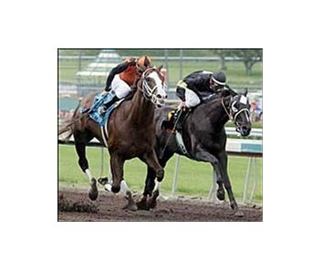 Buzzards Bay, winning the Santa Anita Derby, will pass on the Belmont Stakes.