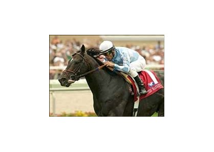 "Eddie Read winner After Market will be one of the favorites in the Arlington Million.<br><a target=""blank"" href=""http://www.bloodhorse.com/horse-racing/photo-store?ref=http%3A%2F%2Fpictopia.com%2Fperl%2Fgal%3Fprovider_id%3D368%26ptp_photo_id%3D1790597%26ref%3Dstory"">Order This Photo</a>"