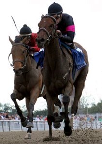 "Inglorious (left) finished second to Kathmanblu in the Rachel Alexandra Stakes.<br><a target=""blank"" href=""http://www.bloodhorse.com/horse-racing/photo-store?ref=http%3A%2F%2Fpictopia.com%2Fperl%2Fgal%3Fprovider_id%3D368%26ptp_photo_id%3D9412624%26ref%3Dstory"">Order This Photo</a>"