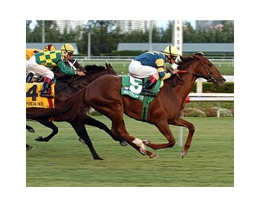 In his second start for new trainer Tom Albertrani, Host takes the Canadian Turf Handicap (gr. IIIT).