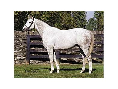Tapit had his first winner May 14 at Churchill Downs.
