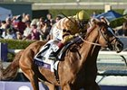 "Wise Dan delivers in the Breeders' Cup Mile.<br><a target=""blank"" href=""http://photos.bloodhorse.com/BreedersCup/2012-Breeders-Cup/Mile/26128708_Rzcb63#!i=2193125321&k=Dg9TTVC"">Order This Photo</a>"