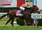 "Mission Approved upsets the Woodford Reserve Manhattan Handicap.<br><a target=""blank"" href=""http://www.bloodhorse.com/horse-racing/photo-store?ref=http%3A%2F%2Fpictopia.com%2Fperl%2Fgal%3Fprovider_id%3D368%26ptp_photo_id%3D9561760%26ref%3Dstory"">Order This Photo</a>"