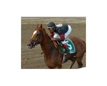 "Ginger Punch is the one to beat in the Ruffian.<br><a target=""blank"" href=""http://www.bloodhorse.com/horse-racing/photo-store?ref=http%3A%2F%2Fpictopia.com%2Fperl%2Fgal%3Fprovider_id%3D368%26ptp_photo_id%3D1838877%26ref%3Dstory"">Order This Photo</a>"