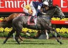 Efficient comes down the center of the track to take the Melbourne Cup (AUS gr.IT) over Purple Moon.