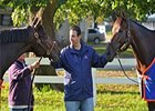 Mike Repole with Stay Thirsty (left) and Uncle Mo at Belmont Park.
