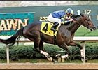 Razor-Sharp Purim Sinks 'Harbor at Oaklawn