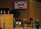 Hip 127, a son of Azeri, failed to meet his reserve despite a $7.7 million bid.