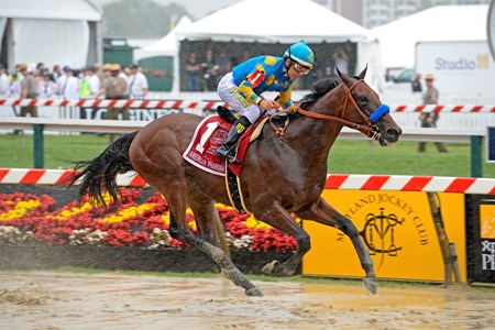 American Pharoah and jockey Victor Espinoza undeterred by the rain on their way to the finish.
