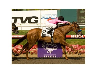 "Dawnie Macho lead throughout and won the Landaluce Stakes at Hollywood Park.<br><a target=""blank"" href=""http://www.bloodhorse.com/horse-racing/photo-store?ref=http%3A%2F%2Fpictopia.com%2Fperl%2Fgal%3Fprovider_id%3D368%26ptp_photo_id%3D9102666%26ref%3Dstory"">Order This Photo</a>"