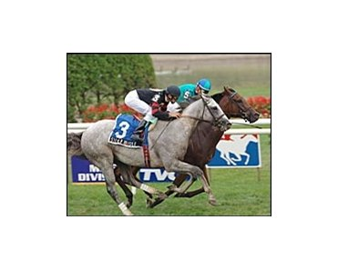 T. D. Vance, background, holds off Silver Whistle to win the Hall of Fame Stakes.