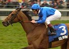 Sulamani (IRE) won the 2001 Pattison Canadian International (Can-I) in 2001.