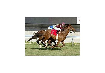 Mr. Light defeated Host to win this year's Appleton Handicap at Gulfstream Park.