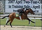 Mineshaft filly, worked eighth of a mile in preparation for Keeneland 2-year-old sale.