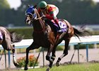 Jaguar Mail wins Japan's most prestigious and longest flat race, the $3.1 million Tenno Sho at Kyoto Racecourse.