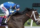 Ashado will be attempting to repeat her win in the Breeders' Cup Distaff.