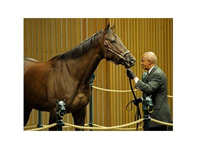 Miss Catalyst, winner of the 2009 Pebbles Stakes at Belmont Park, brought the session's top price of $325,000.