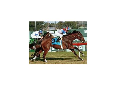 Startac, winning Hollywood Park's Generous Stakes.
