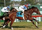 Startac, winning the Generous Stakes at Hollywood Park last November.