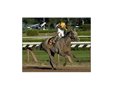 "Spinaway Stakes winner Irish Smoke takes on a full field in Friday's Alcibiades at Keeneland.<br><a target=""blank"" href=""http://www.bloodhorse.com/horse-racing/photo-store?ref=http%3A%2F%2Fpictopia.com%2Fperl%2Fgal%3Fprovider_id%3D368%26ptp_photo_id%3D2167906%26ref%3Dstory"">Order This Photo</a>"