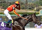 "2-time Breeders' Cup Sprint Winner Midnight Lute<br><a target=""blank"" href=""http://www.bloodhorse.com/horse-racing/photo-store?ref=http%3A%2F%2Fpictopia.com%2Fperl%2Fgal%3Fprovider_id%3D368%26ptp_photo_id%3D6473503%26ref%3Dstory"">Order This Photo</a>"