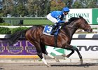 "Girolamo is the one to beat in the Breeders' Cup Sprint.<br><a target=""blank"" href=""http://www.bloodhorse.com/horse-racing/photo-store?ref=http%3A%2F%2Fpictopia.com%2Fperl%2Fgal%3Fprovider_id%3D368%26ptp_photo_id%3D8547713%26ref%3Dstory"">Order This Photo</a>"