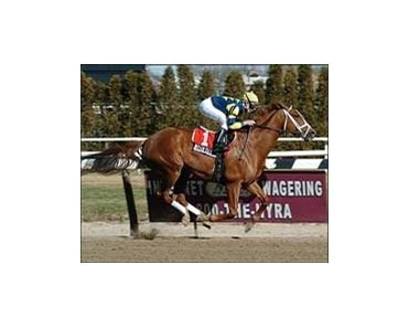 "Indian Vale, with Mike Luzzi up, wins the Next Move Stakes, Saturday at at Aqueduct.<br><a target=""blank"" href=""http://www.bloodhorse.com/horse-racing/photo-store?ref=http%3A%2F%2Fpictopia.com%2Fperl%2Fgal%3Fprovider_id%3D368%26ptp_photo_id%3D949011%26ref%3Dstory"">Order This Photo</a>"