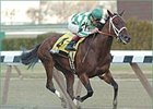 Randaroo wins the Distaff Breeders' Cup Handicap.