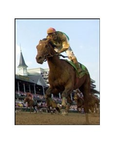 Afleet Alex, here finishing third in the Derby, ships to Pimlico today.