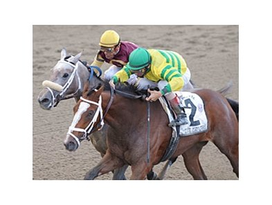 "Devil May Care (right) holds off Awesome Maria to win the Frizette. <br><a target=""blank"" href=""http://www.bloodhorse.com/horse-racing/photo-store?ref=http%3A%2F%2Fpictopia.com%2Fperl%2Fgal%3Fprovider_id%3D368%26ptp_photo_id%3D8546495%26ref%3Dstory"">Order This Photo</a>"
