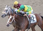 Devil May Care Earns Breeders' Cup Berth