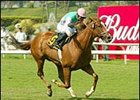 Tates Creek provided trainer Frankel with his second grade I win on Memorial Day.