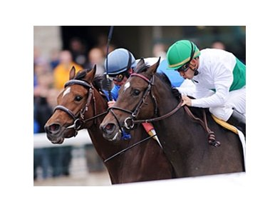 "House of Grace (left) outfinishes Smart Seattle to win the Jessamine at Keeneland.<br><a target=""blank"" href=""http://www.bloodhorse.com/horse-racing/photo-store?ref=http%3A%2F%2Fpictopia.com%2Fperl%2Fgal%3Fprovider_id%3D368%26ptp_photo_id%3D8556998%26ref%3Dstory"">Order This Photo</a>"