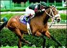 Champion Perfect Sting makes her 2001 debut in the Black Helen Handicap.