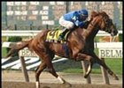 Express Tour, winning the 2001 Jerome Handicap.