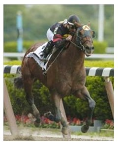 "<a href=""http://www.exclusivelyequine.com/ee.asp?PI=P50-1006"">Ghostzapper wins the Met Mile in his final start.</a>"