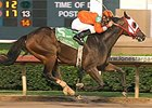 Five-time stakes winner Mystery Classic has been named the 2007 Texas Horse of the Year.