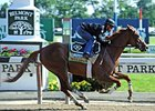 Dullahan works at Belmont Park.