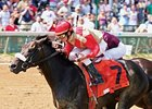 Chelokee, who won the Northern Dancer at Churchill Downs on June 16, 2008, takes on 6 in the Alysheba Stakes May 2.