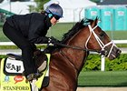 "Stanford has finished second in three straight races.<br><a target=""blank"" href=""http://photos.bloodhorse.com/TripleCrown/2015-Triple-Crown/Kentucky-Derby-Workouts/i-nhN7g3w"">Order This Photo</a>"