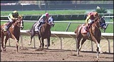 California Star General Challenge Retired