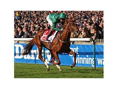New Approach won the Irish Champion Stakes Oct. 18.
